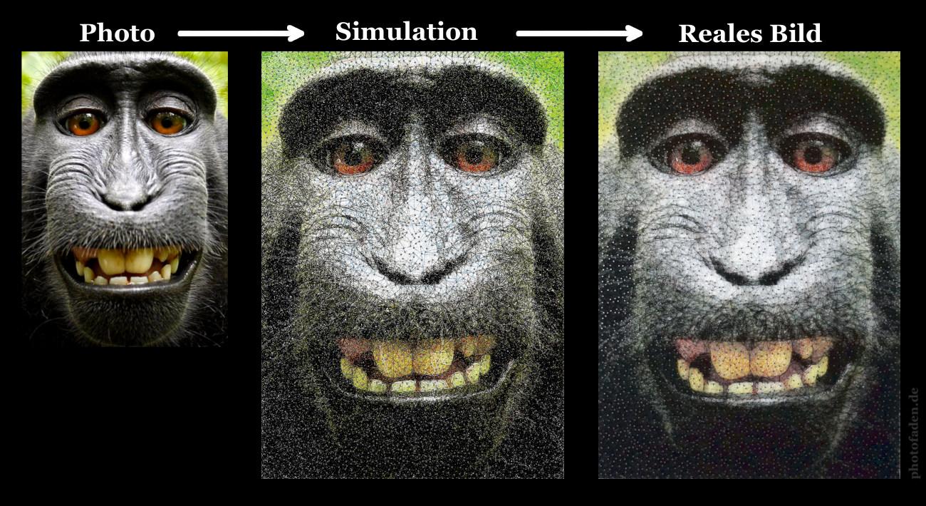 Vorab-Simulation